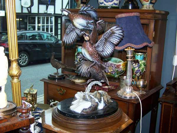 Bronze-Pheasants-Ashford-Kent